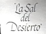 La Sal del Desierto
