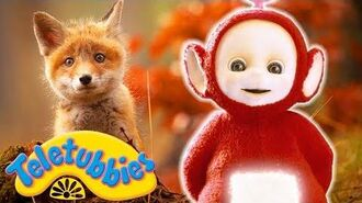 ★Teletubbies English Episodes★ Fox Cubs ★ Full Episode - HD (S11E19)