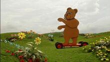 I'm the Bear, I'm the Bear!