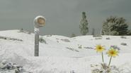 TBB VT Snow