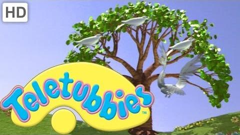 Video Teletubbies Magical Event The Magic Tree Clip