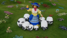 Here are my sheep