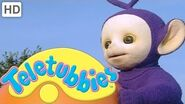 Teletubbies - Delilah Packing