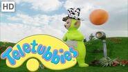 Teletubbies Rockpool, Animals 3 (Season 1, Episode 23)