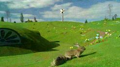 Homehill2