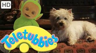 Teletubbies- Dirty Dog - HD Video
