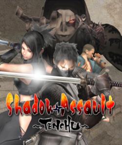 ShadowAssault