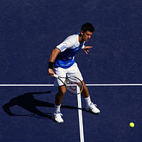 Novak Djokovic Tennis Database Wiki Fandom