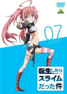 DVD 7