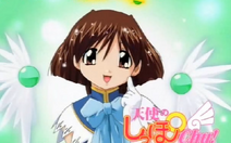 Midori 2nd