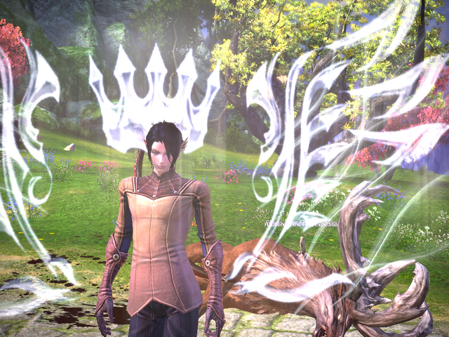 File:TERA ScreenShot 20110404 024524.png