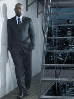 S1 ladder Ellison