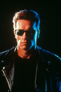 T2-promo-arnold-just him