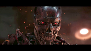 Tg-originalt800-film-endoskull-2