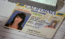 SCC 102 sarahs fake driver license
