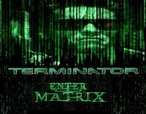 Terminator Enter the Matrix