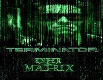 Terminator Enter the Matrix 2