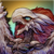 Holy Dragon Z icon