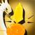 Rune (Companion) icon