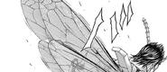 Shokichi's wings