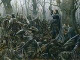 Batalha de Amon Hen
