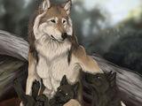 Lycan - Loup garou