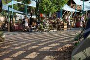 TN market set