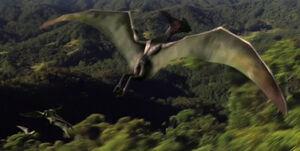 Pterosaurswithin1