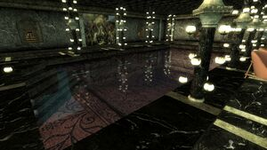 Commander Apartment Swimming Pool