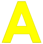 A body