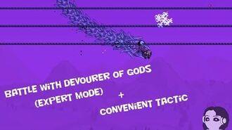 Terraria Calamity mod Beating Devourer of Gods in Expert mode сonvenient tactics of the battle