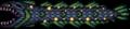 120px-Gulper Eel