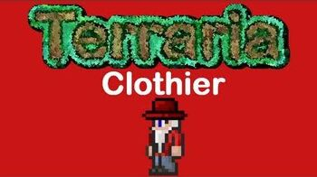 Terraria Clothier & His Vanity Items