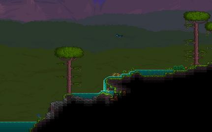 Krajobraz dżungla