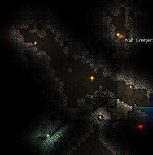 Spinnenhöhle