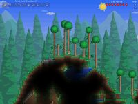 Terraria Forest Biome