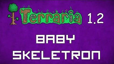 Baby Skeletron - Terraria 1.2 Guide New Pet!