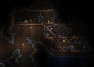 Woodhousec2
