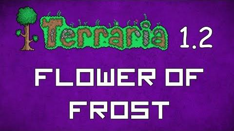 Flower of Frost - Terraria 1.2 Guide New Magic Weapon!