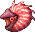 Blood Nautilus1