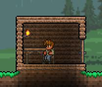 Valid House Door