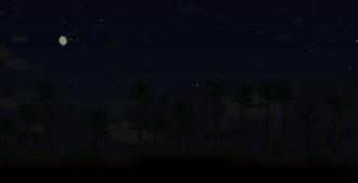 Noche paisaje