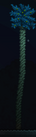 Святая пальма