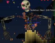 Skeletron terraria