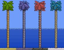 4PalmTrees