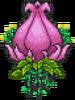 Plantera1Form
