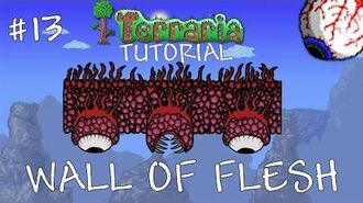 How to defeat the wall of flesh solo - Terraria 1.3 Tutorial the Wall of flesh