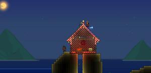 Ручной попугай гадит на крышу
