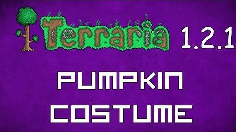 Pumpkin Costume - Terraria 1.2