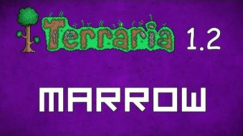 Marrow - Terraria 1